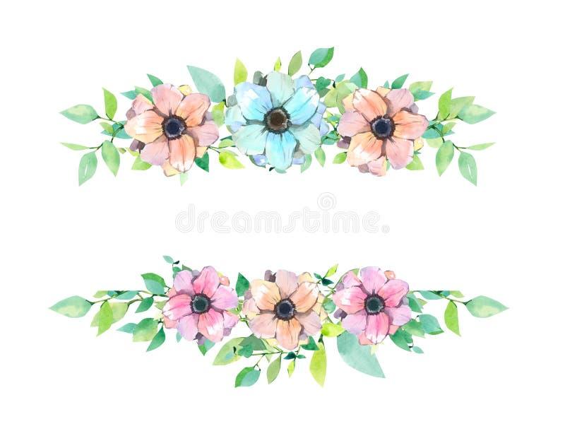Cadre floral d'été de ressort d'aquarelle, calibre, bannière Les anémones conçoivent illustration stock
