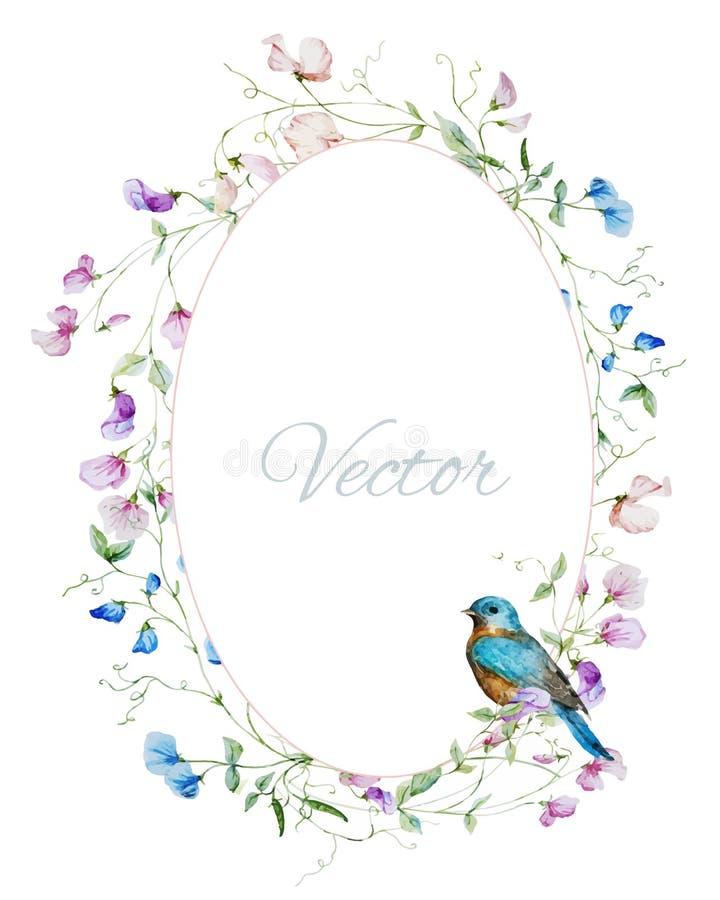 Cadre floral d'aquarelle illustration libre de droits