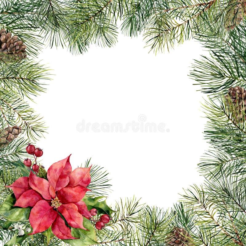 Cadre floral de Noël d'aquarelle avec la poinsettia Branche d'arbre peinte à la main de Noël, cône de pin, poinsettia, houx illustration stock