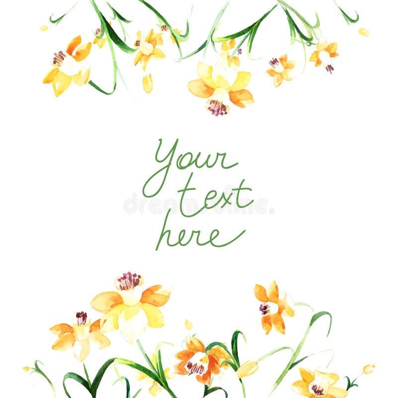 Cadre floral doux avec les jonquilles jaunes faites dans la technique d'aquarelle illustration libre de droits