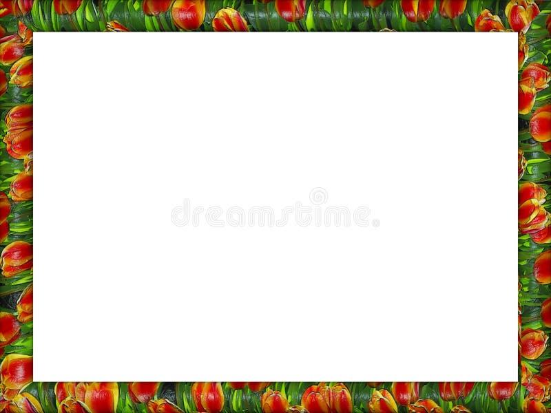 Cadre floral en céramique de tulipes artistiques image libre de droits