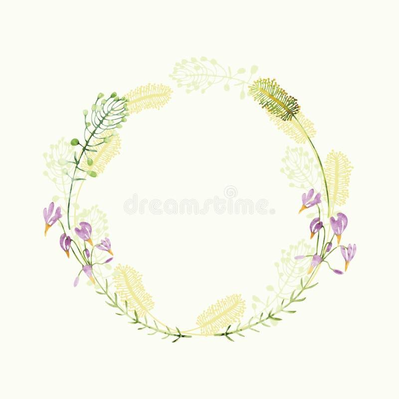 Cadre floral rond d'aquarelle de vecteur Frontière de fines herbes d'aspiration de main illustration libre de droits