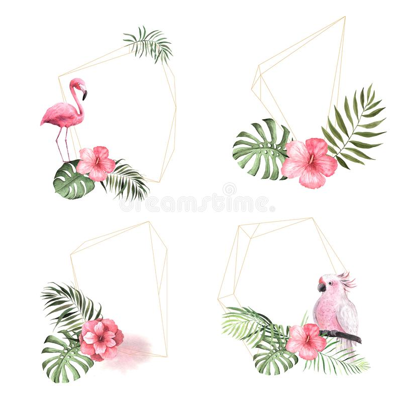 Cadre géométrique floral tropical d'aquarelle illustration de vecteur