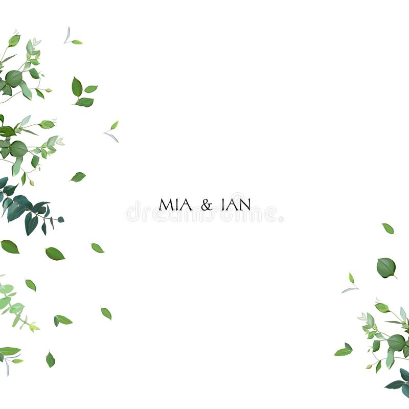 Cadre minimalistic de fines herbes de vecteur illustration stock