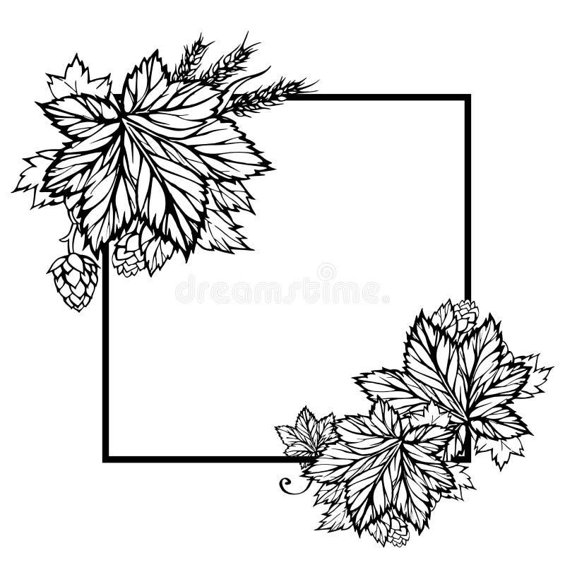Cadre noir et blanc de vecteur carré avec l'houblon et le blé illustration de vecteur