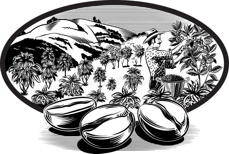 Cadre ovale, avec des grains de café illustration stock