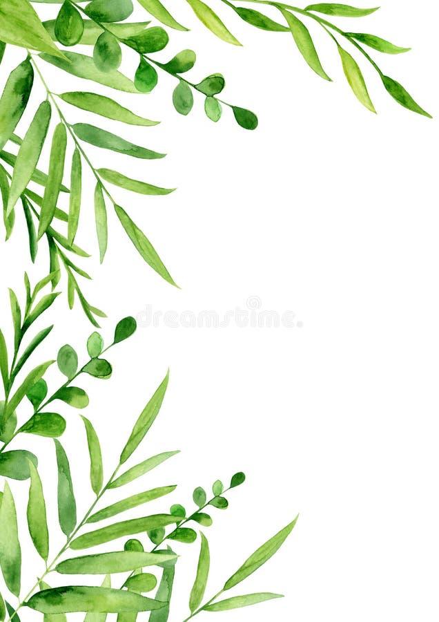 Cadre peint à la main d'aquarelle avec des feuilles et des brunchs photographie stock