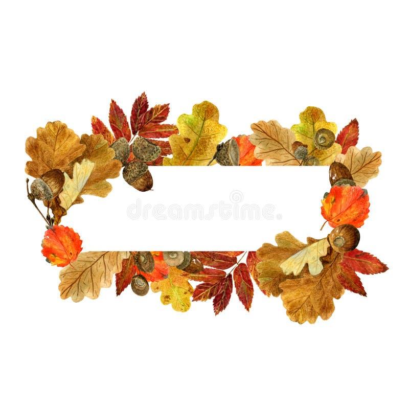 Cadre rectangulaire d'aquarelle avec des feuilles et des baies d'automne Fond avec le feuillage d'automne, les glands et l'endroi illustration stock