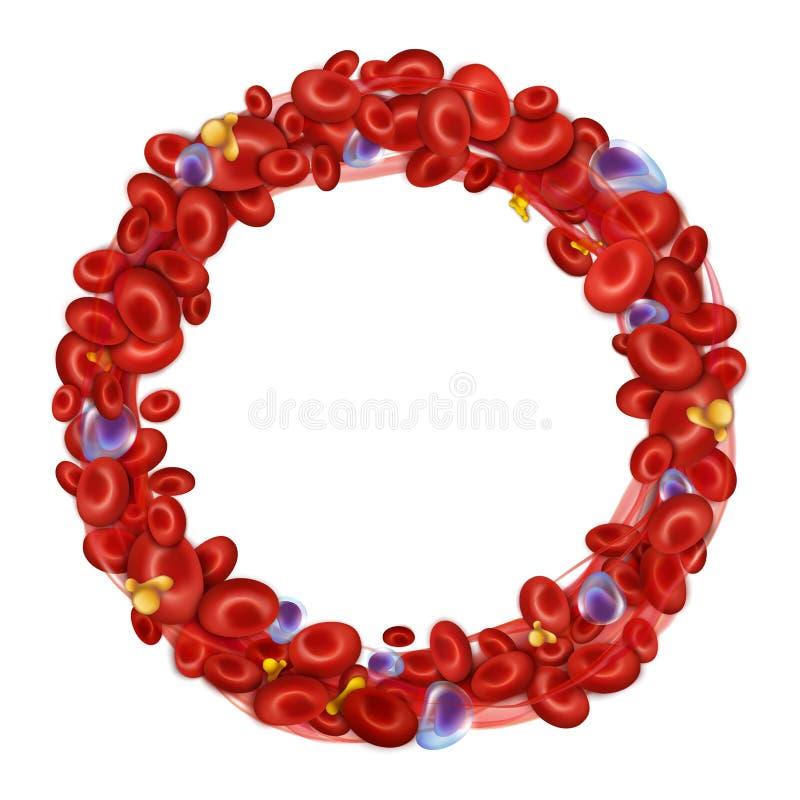 Cadre rond des globules sanguins Vecteur illustration de vecteur