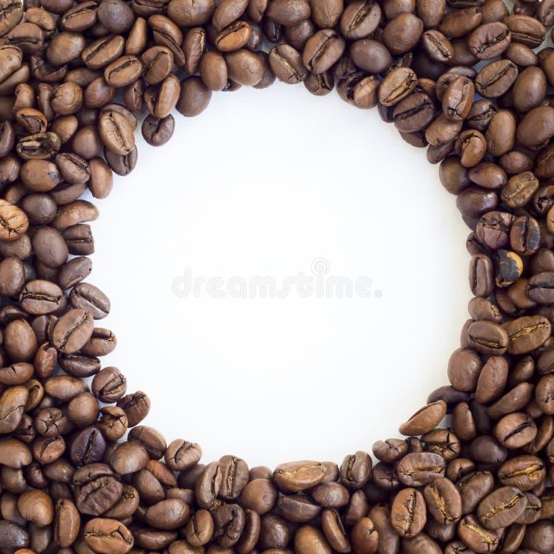 Cadre rond des grains de café photo libre de droits