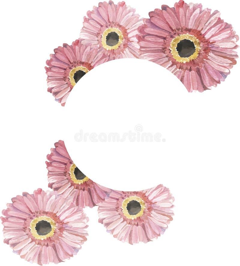 Cadre rose de marguerite de gerbera Illustration d'aquarelle illustration de vecteur