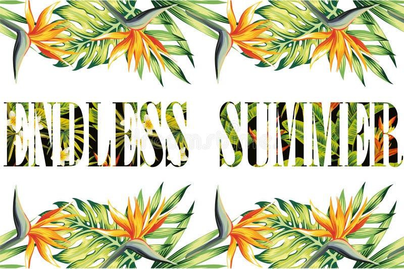 Cadre sans fin de jungle d'été de slogan illustration libre de droits