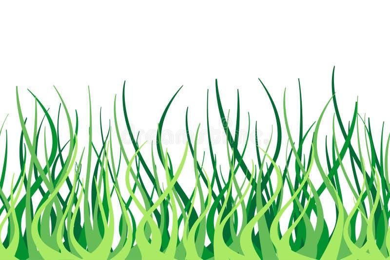 Cadre sans joint de vecteur d'herbe verte illustration de vecteur
