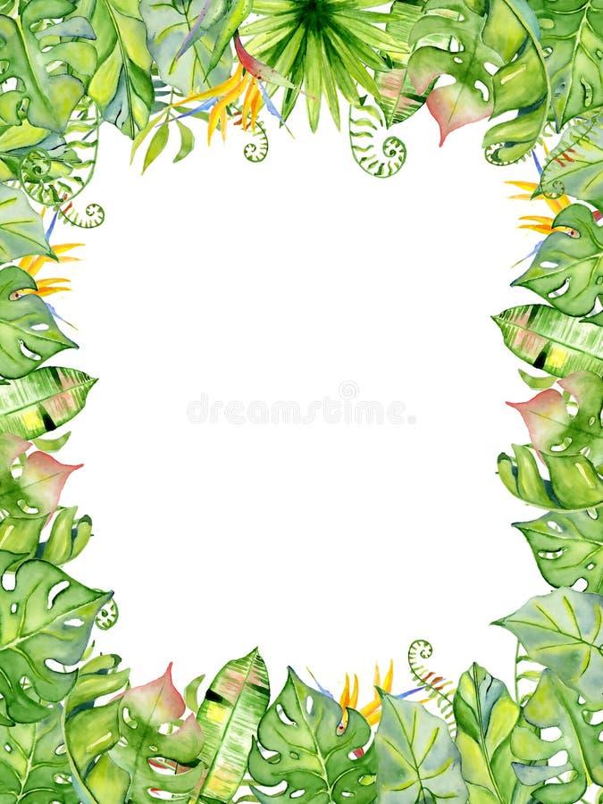 Cadre tropical de feuilles d'aquarelle illustration libre de droits