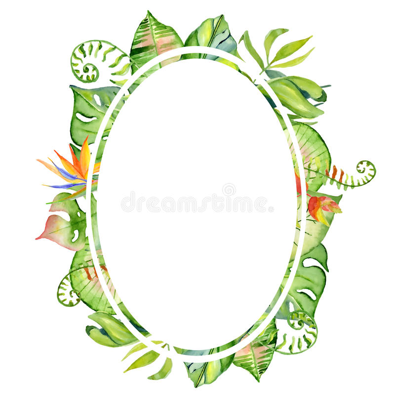 Cadre tropical de feuilles d'aquarelle illustration de vecteur