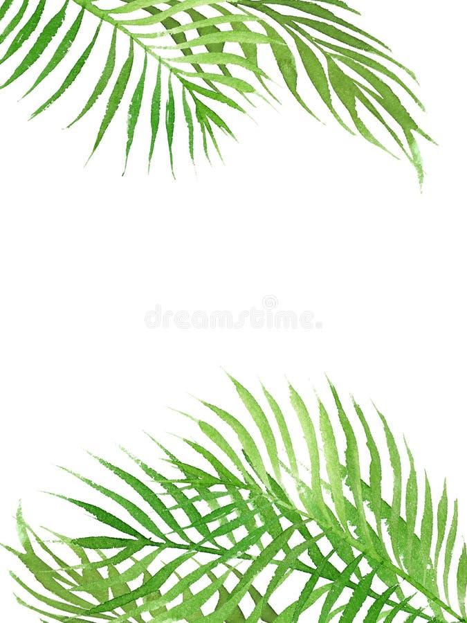 Cadre tropical de frontière d'aquarelle avec des feuilles de palmier illustration libre de droits
