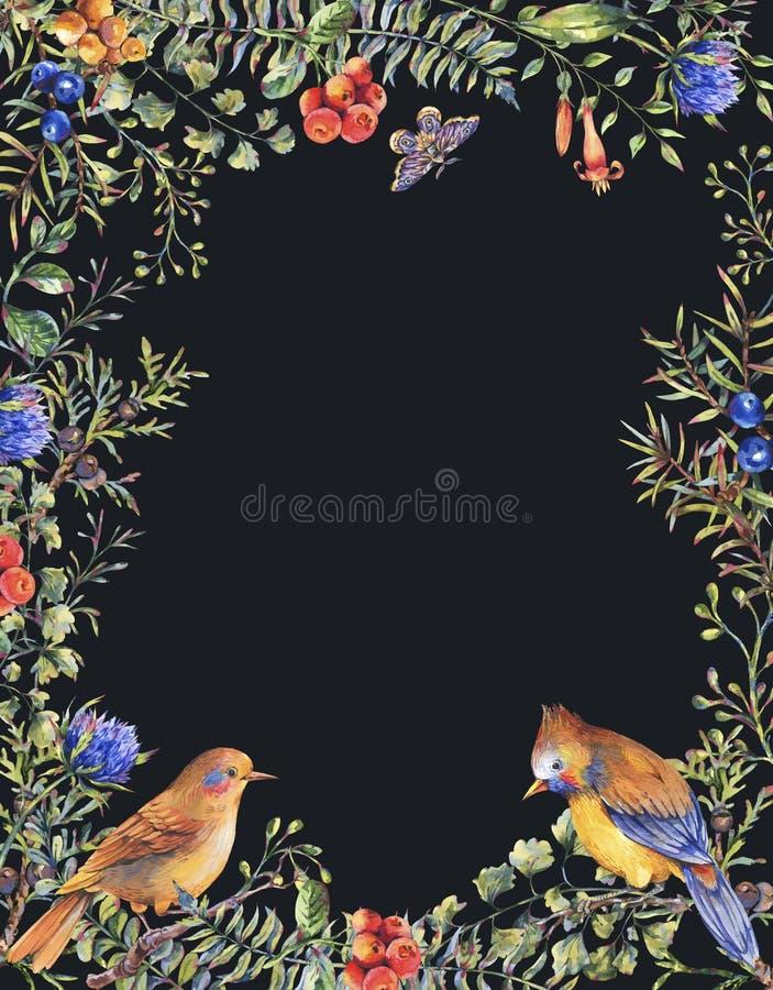 Cadre vertical de for?t florale de cru d'aquarelle avec des paires d'oiseaux, de branches de sapin, de baies, de mite, de fleurs  illustration stock