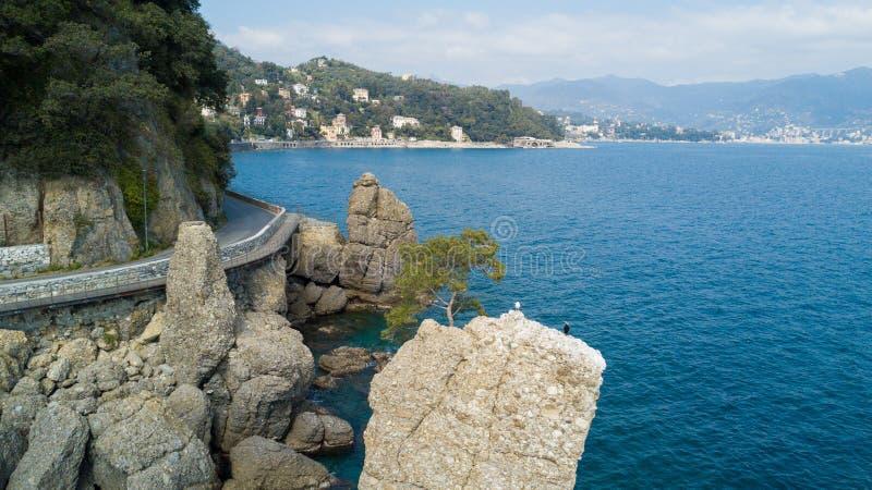 Cadrega、海杉树、鸟瞰图、江边在圣马尔盖里塔利古雷之间和菲诺港利古里亚岩石, 库存图片