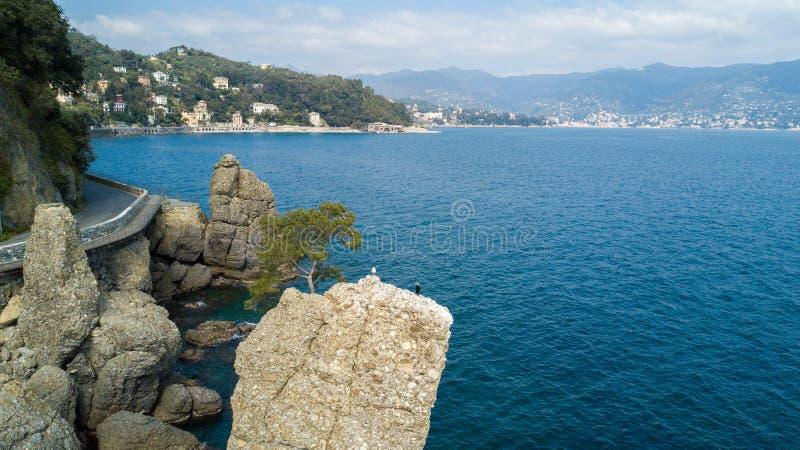 Cadrega、海杉树、鸟瞰图、江边在圣马尔盖里塔利古雷之间和菲诺港利古里亚岩石, 库存照片