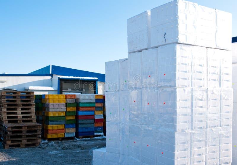 Cadres de polystyrène image libre de droits