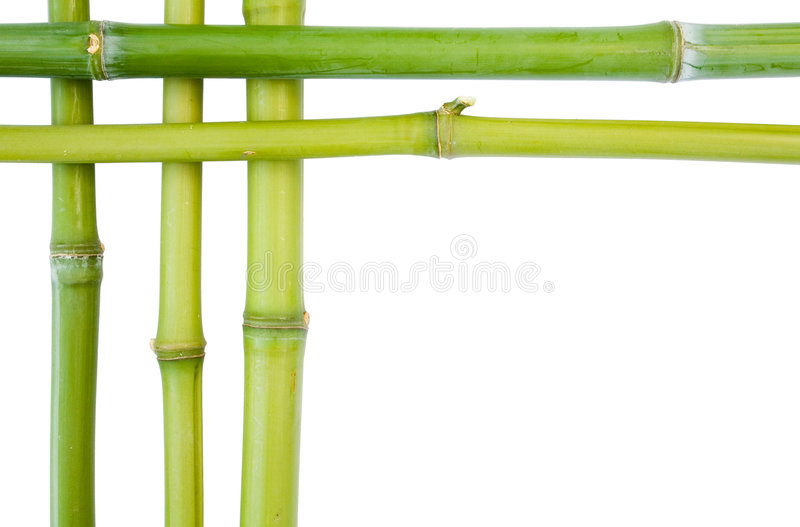 Cadres en bambou photographie stock libre de droits