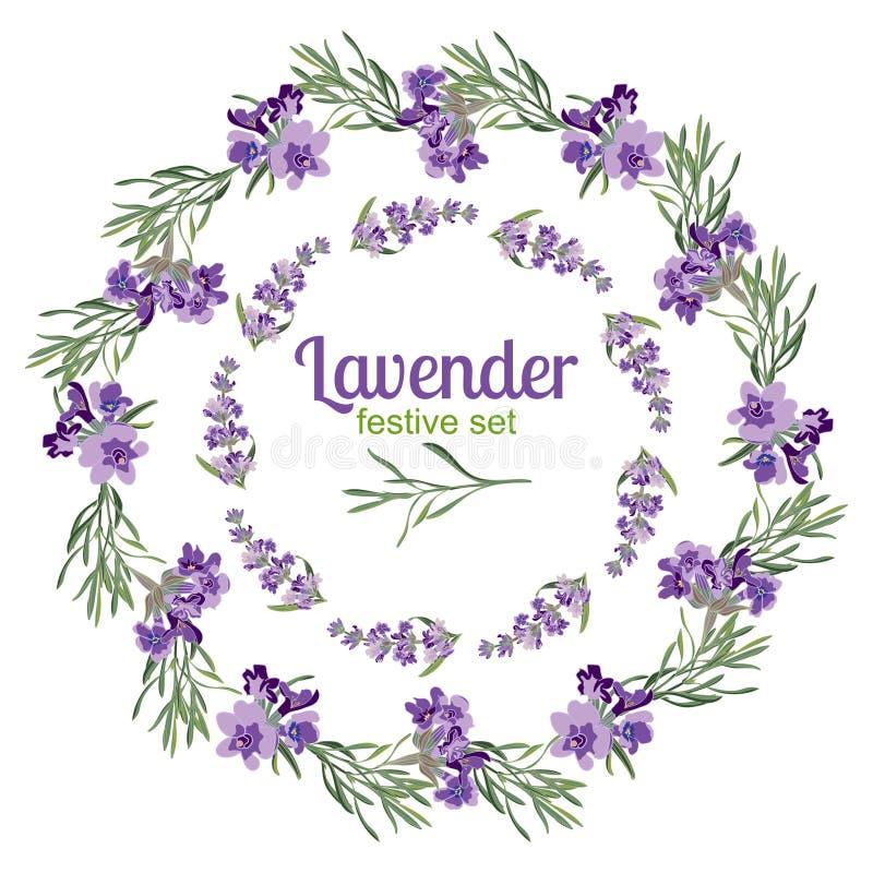 Cadres et éléments de fête réglés avec des fleurs de lavande pour la carte de voeux Illustration botanique illustration de vecteur