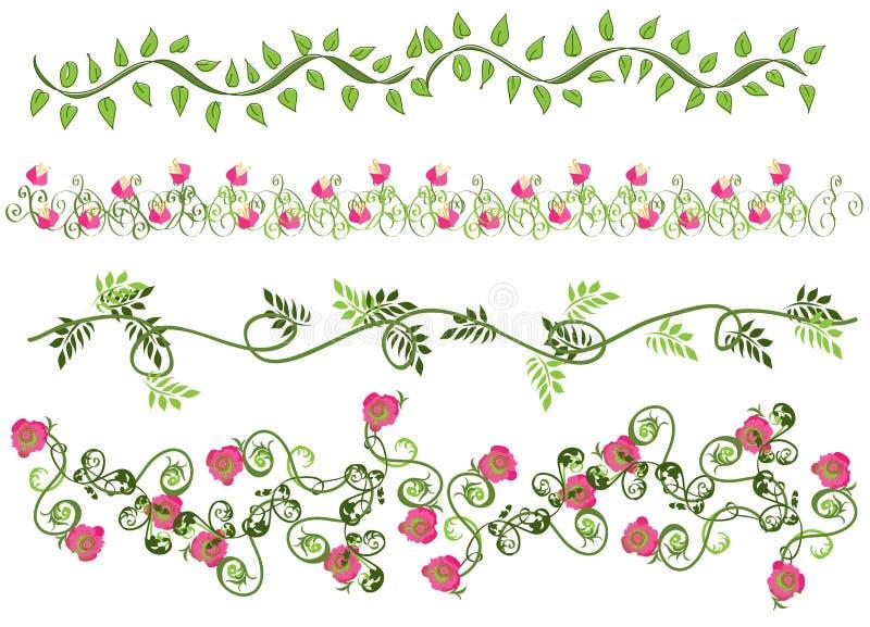 Cadres floraux