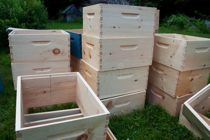 Cadres superbes de colonie non finie d'abeille images stock