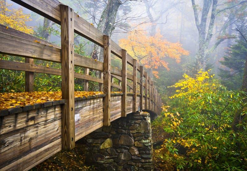 Caduta blu appalachiana del Ridge della traccia di escursione di autunno fotografia stock