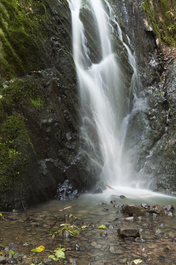 Caduta dell'acqua sulle rocce con muschio immagini stock