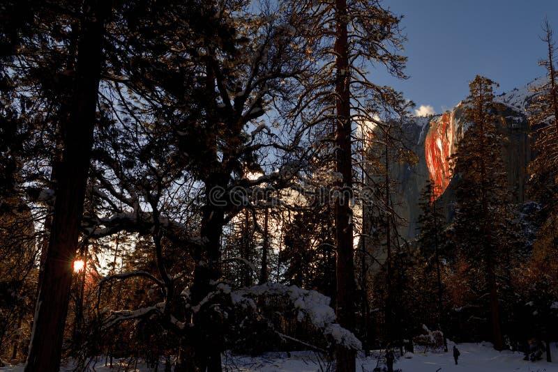 Caduta dell'equiseto al parco nazionale di Yosemite immagini stock libere da diritti