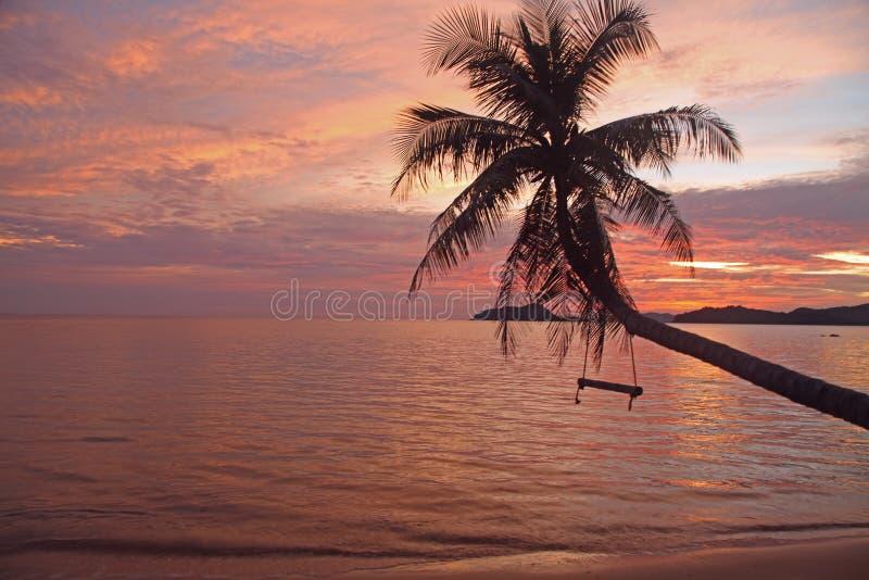 Caduta della culla o dell'oscillazione sul bello tramonto del cocco all'isola Trat Tailandia di Mak del KOH della spiaggia fotografia stock