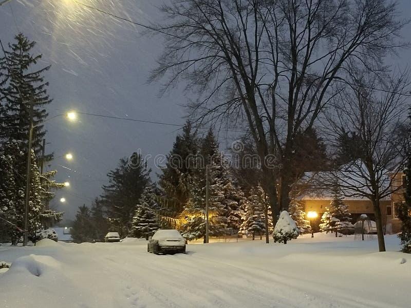 Caduta della neve alla notte fotografia stock libera da diritti