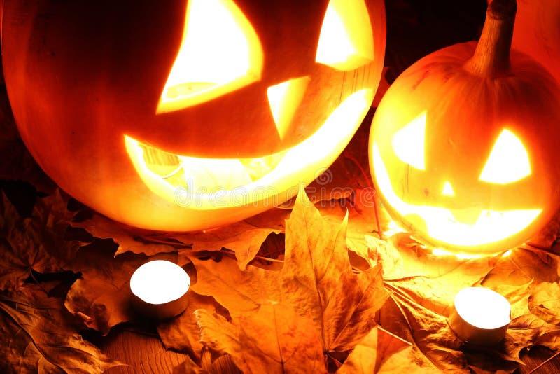 Caduta delle foglie della zucca di Halloween fotografie stock