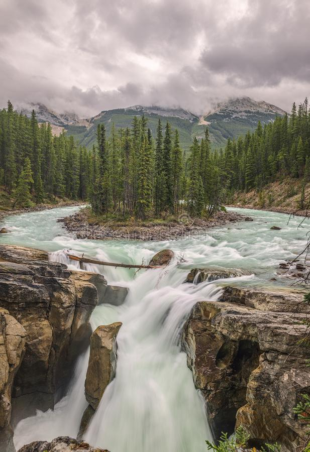 Caduta di Sunwapta in Jasper National Park alberta canada fotografia stock libera da diritti