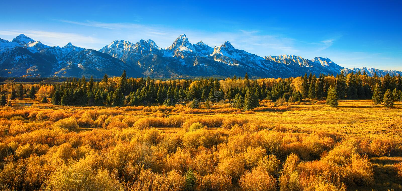 Caduta nel grande parco nazionale di Tetons fotografia stock libera da diritti