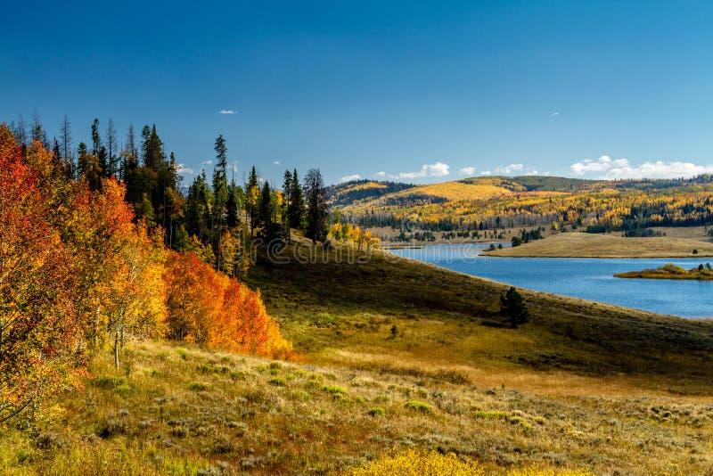 Caduta in Steamboat Springs Colorado immagine stock