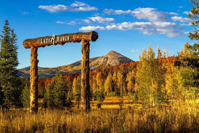 Caduta in Steamboat Springs Colorado fotografie stock libere da diritti