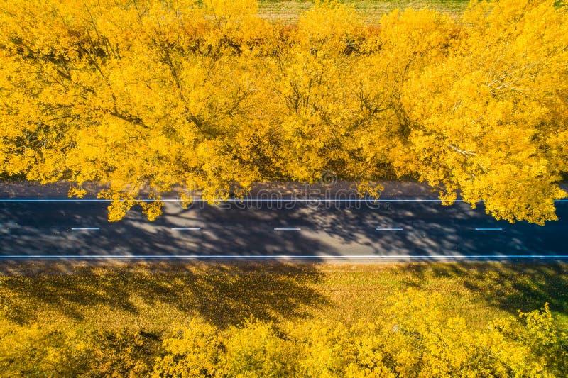 Caduta Strada Fondo di viaggio di autunno Strada nella foresta di caduta da sopra fotografia stock