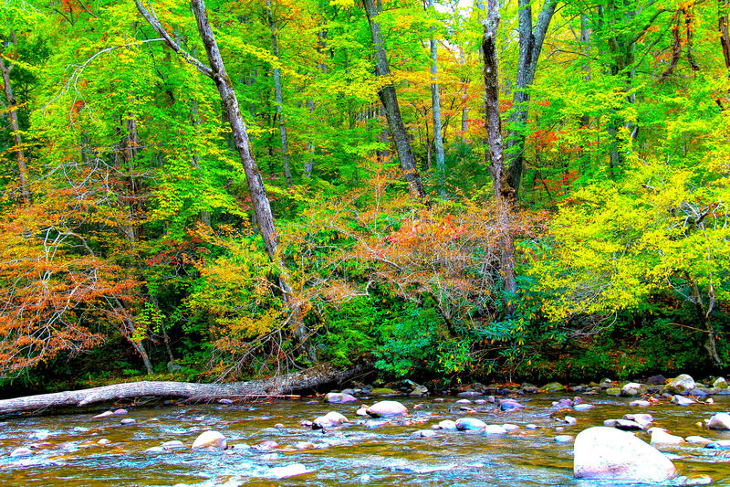 Cadute con il fondo del fiume immagini stock libere da diritti