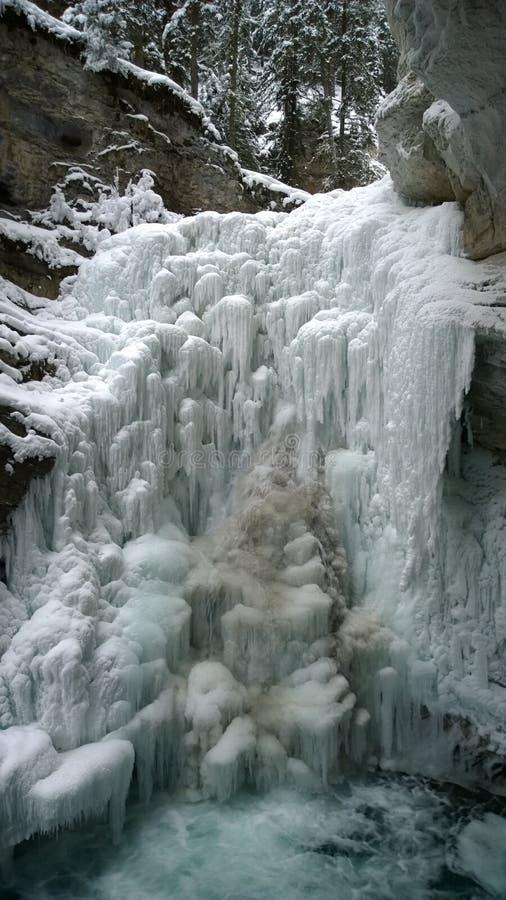 Cadute congelate, lago Louis, Johnston Canyon, Banff fotografie stock libere da diritti