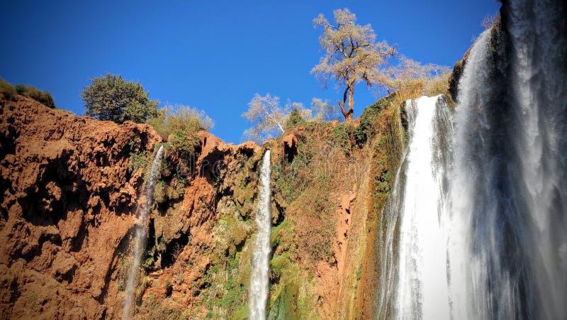 Cadute dell'acqua di Ouzoud fotografie stock libere da diritti