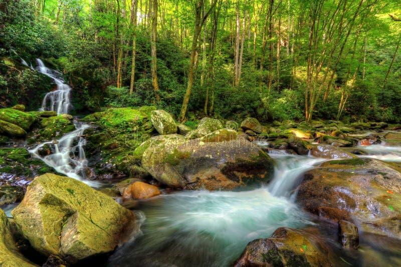 Cadute dell'insenatura del topo di grande parco nazionale della montagna fumosa fotografie stock libere da diritti