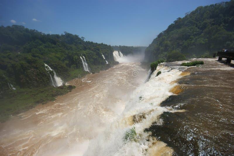 Cadute di Iguacu immagini stock