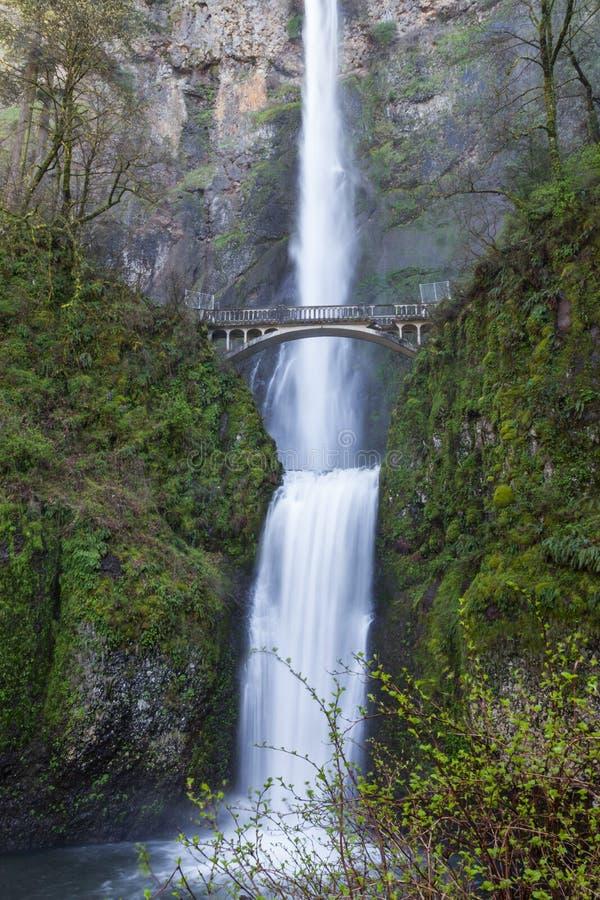 Cadute di Multnomah, Oregon fotografie stock libere da diritti