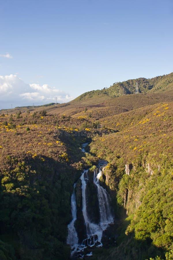Download Cadute di Waipunga fotografia stock. Immagine di acqua - 7305282