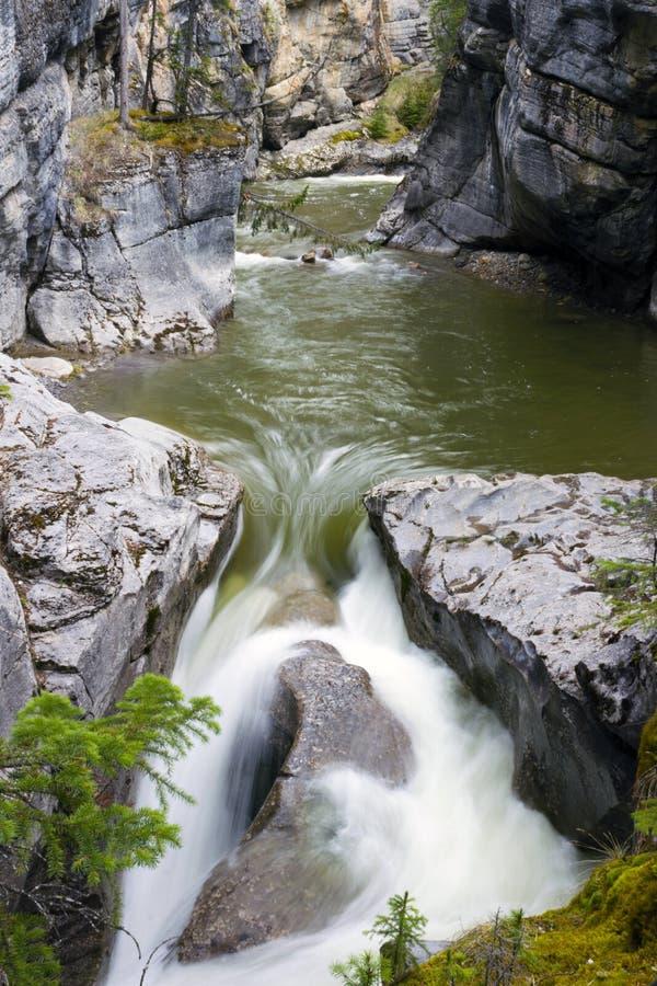 Cadute Jasper National Park del canyon di Maligne immagini stock libere da diritti