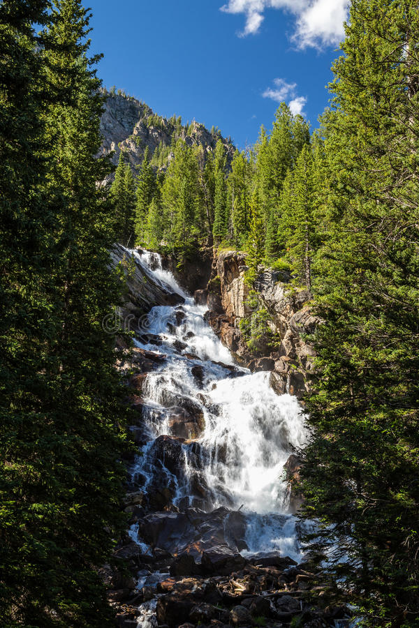 Cadute nascoste al grande parco nazionale di Teton, il Wyoming, U.S.A. immagini stock