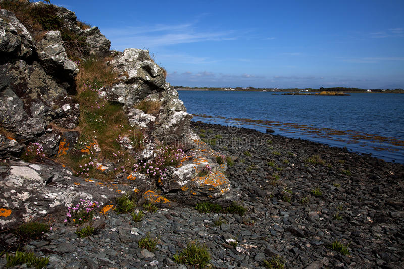 Download Cae Glas Nature reserve stock image. Image of wales, anglesey - 25821393