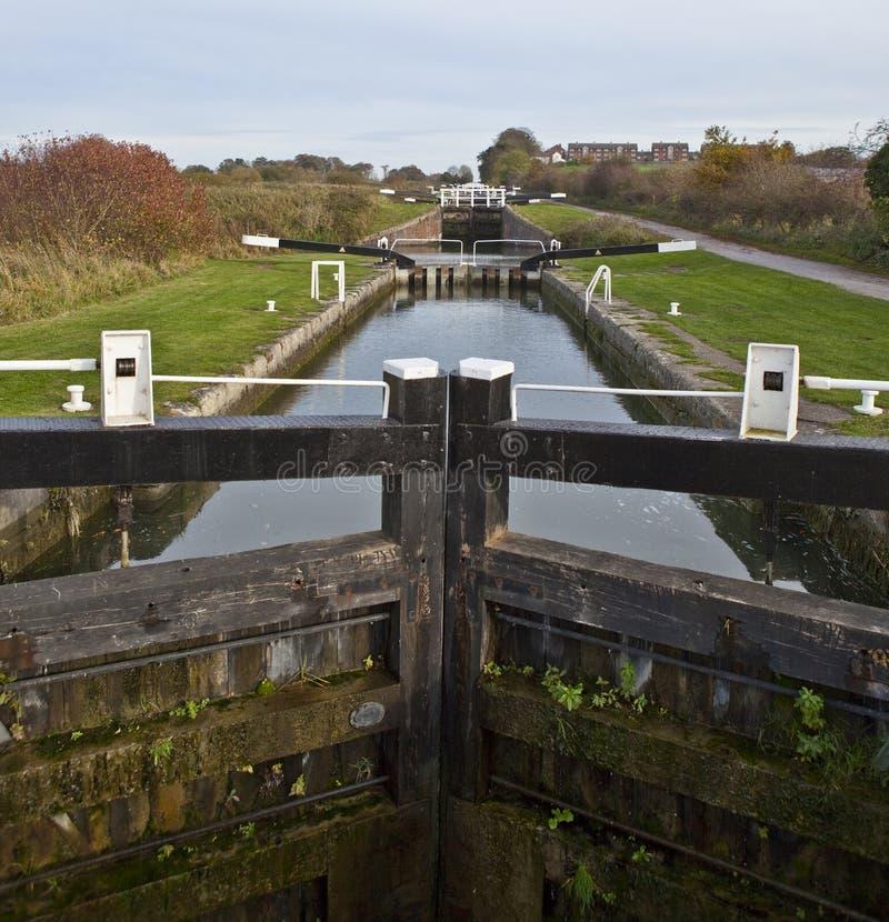 Caen trava Wiltshire imagem de stock royalty free